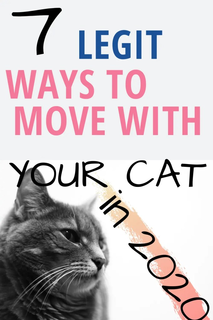 HOW TO MOVE WITH CATS