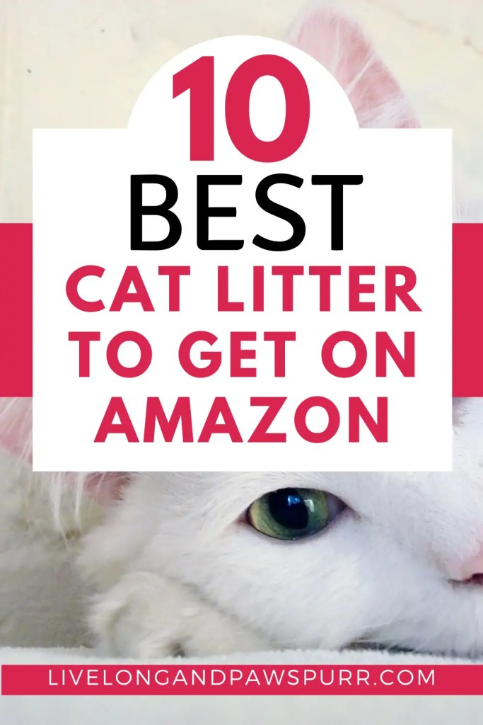 Best Cat Litter To Get On amazon #catproducts #catlitter