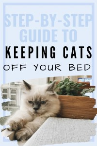 how to keep cats off your bed