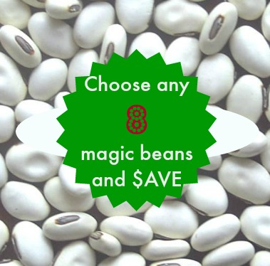 8 Magic Beans Create Your Own Magic Bean Kit
