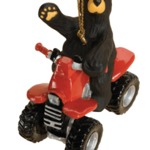 Bear on ATV