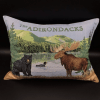 Adirondacks Tapestry large pillow