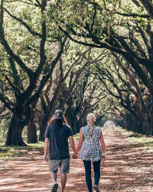 A couple holding hands and walking down an oak lined road in New Orleans at Evergreen Plantation