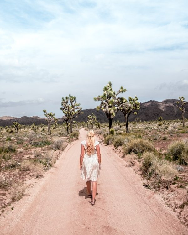 Queen Valley Road in Joshua Tree National Park gets you away from the crowds and into a more secluded area of the park. Joshua Tree is the perfect stop on a road trip or for a one day stop, so here is a one day itinerary of all the spots you don't want to miss!