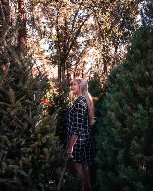 Standing among the Christmas trees at Santa's Tree Farm near Orlando, Florida. Get a local's guide to 40+ things to do in Orlando at Christmas here.