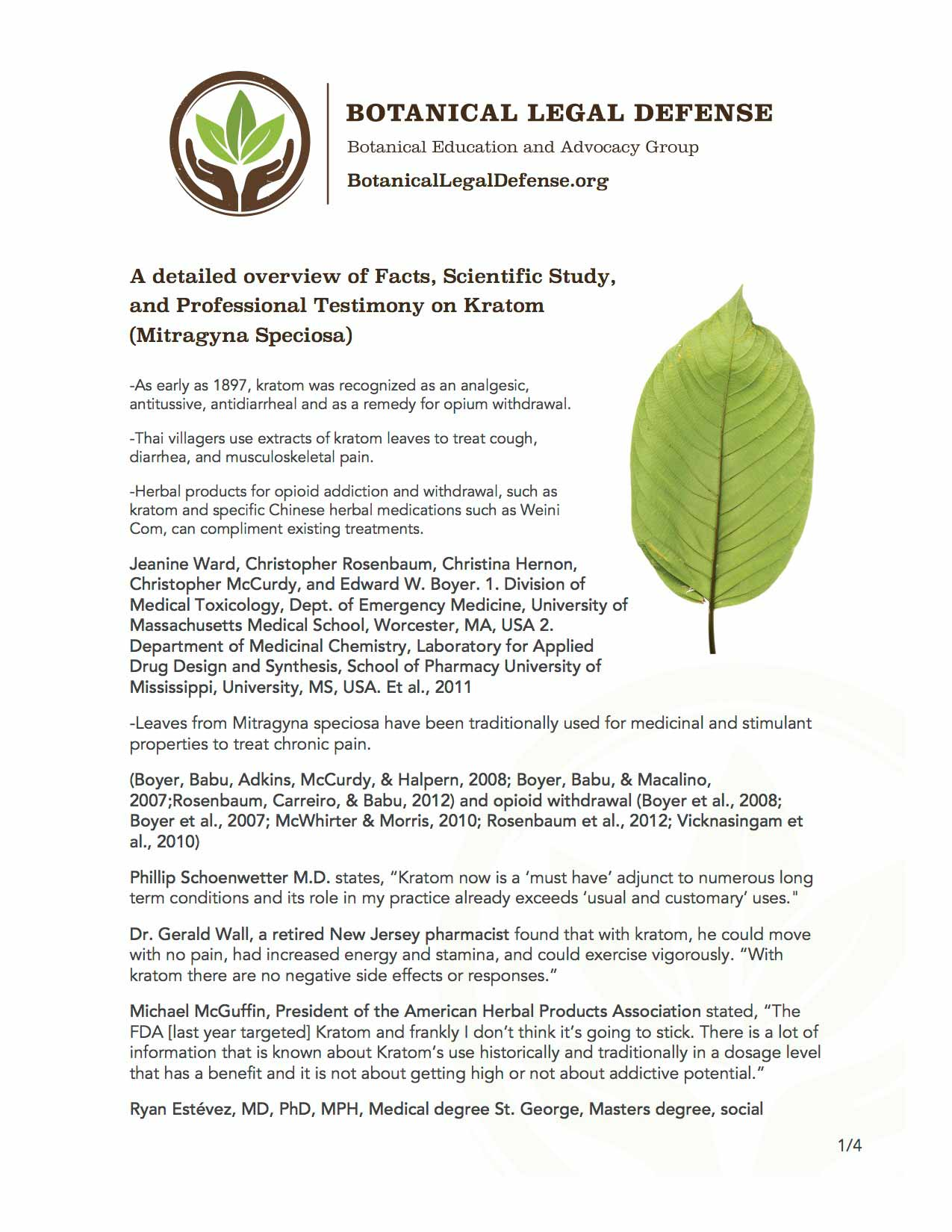 What is Kratom? Answers from the Botanical Legal Defense Group