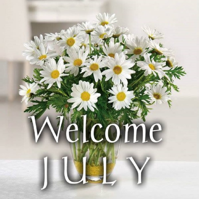 Happy New Month Lively Stones Family: July Is About Freshness & Growth!