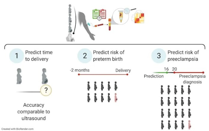 A 26-year-old Stanford grad student created a simple test to predict which pregnancies are likely to become premature deliveries