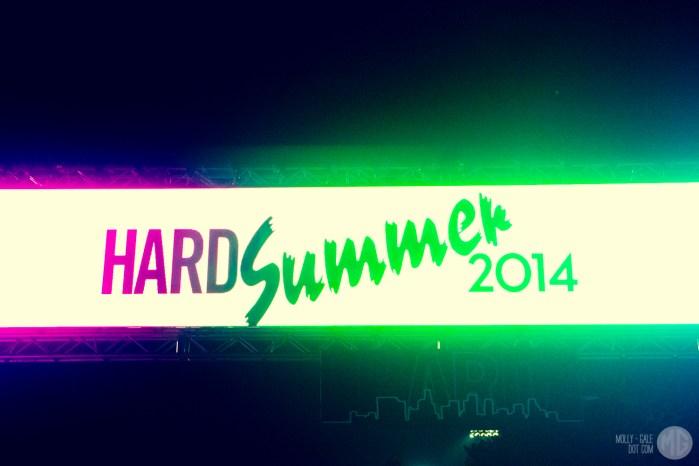 hard summer-110