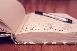 Iniziamo a guidare il diario