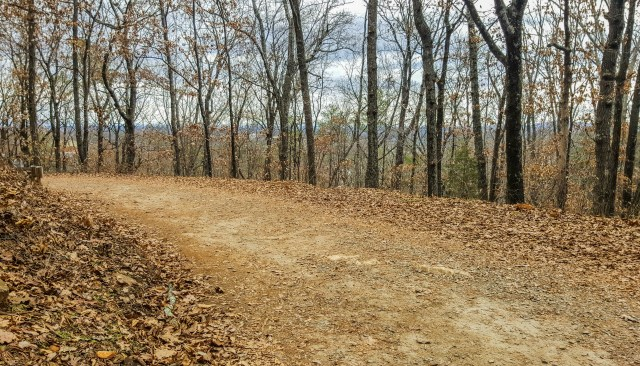 Peace and quiet on the Kennesaw Mountain Trail