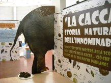 La cacca: storia naturale dell'innominabile, ovvero: ciò che tutti fanno ma di cui pochi parlano! in mostra a Roma al Bioparco dal 16 marzo al 30 giugno 2017