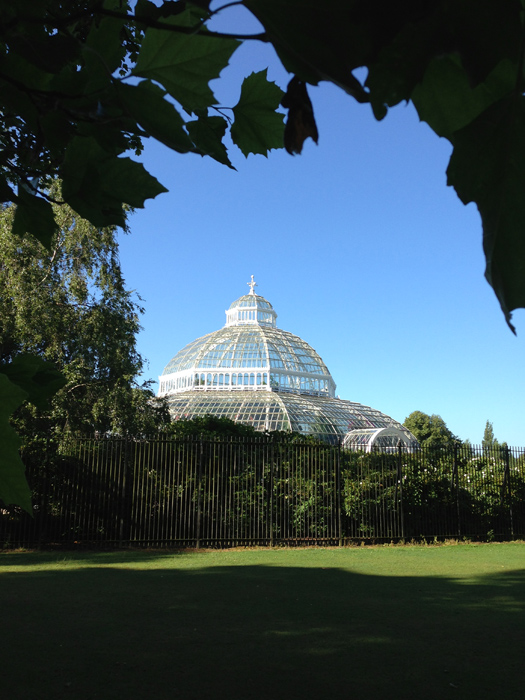NEWS: Sefton Park Palm House to host an array of Christmas events this December