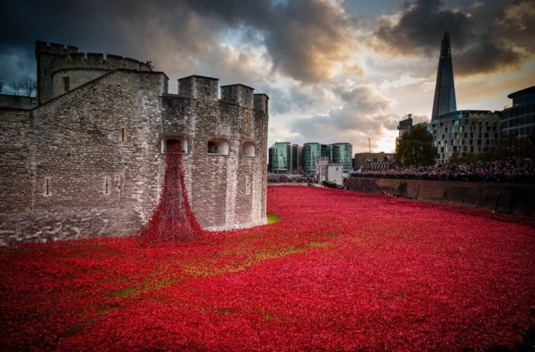 Tower of London Weeping Window Poppies Coming To Liverpool's St George's Hall From 7th November