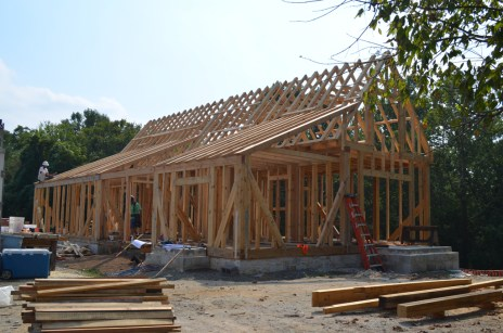 Rafters and shed roof beams all in place.