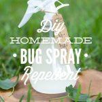 Diy Homemade Bug Spray Repellent Live Simply