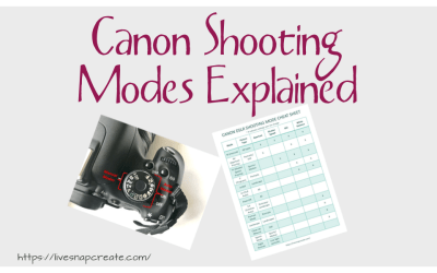 Understanding Canon DSLR Camera Modes