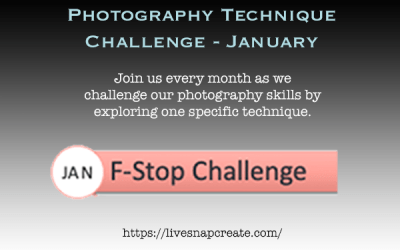 January Photography Technique Challenge