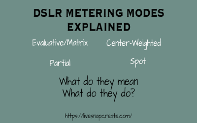 DSLR Metering Modes Explained