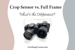 Crop sensor vs Full-frame - What's the Difference - Image shows two DSLR cameras