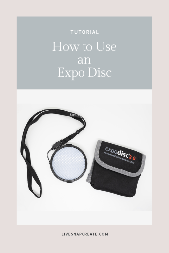 How to use an expo disc with image of an expo disc for photography