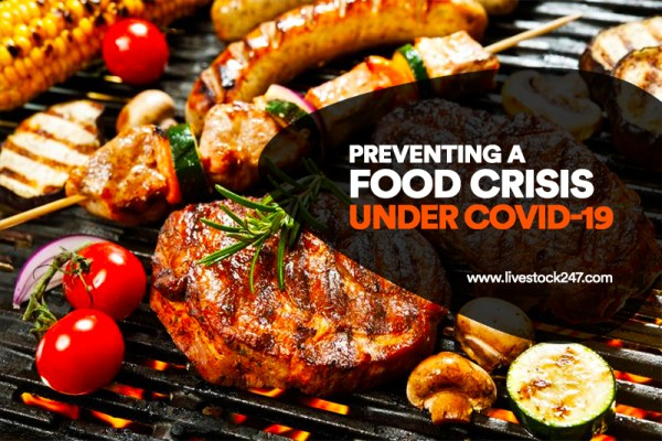 Preventing A Food Crisis Under Covid-19