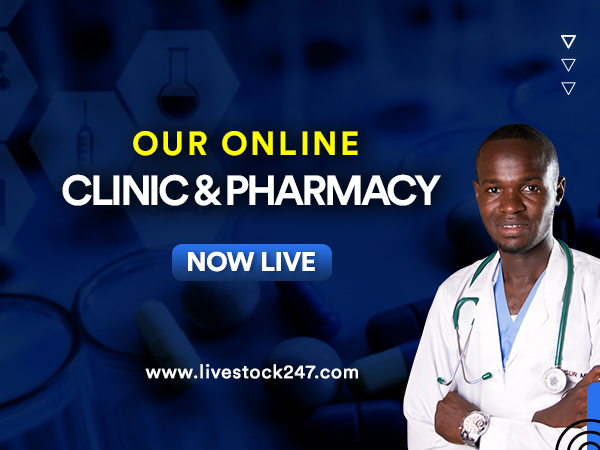 Online Clinic and Pharmacy Now Live