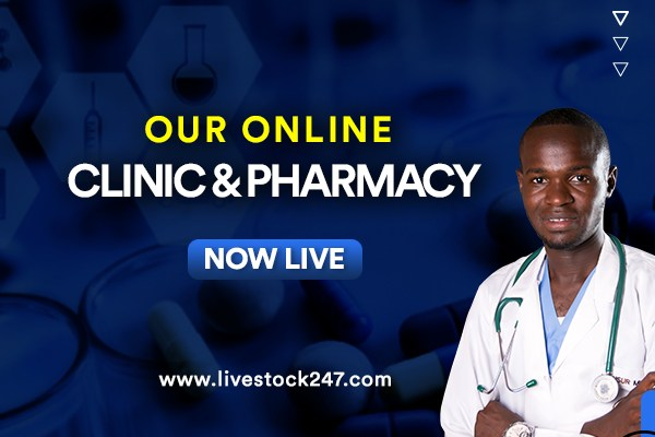 Online Clinic and Pharmacy