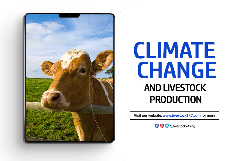 Climate Change and Livestock Production