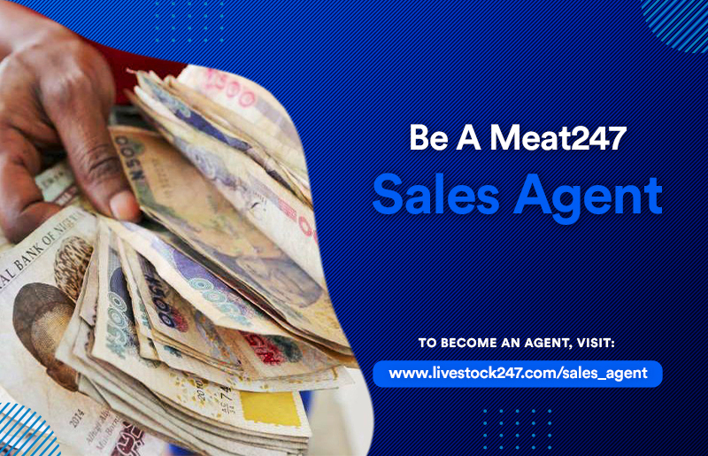 Be a meat247 sales agent