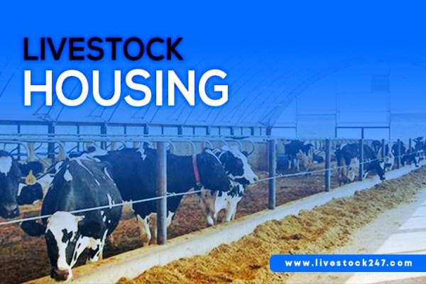 livestock housing