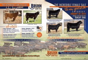 Bruhn Cattle Incredible Club Calf Sale @ Mapleton | Iowa | United States