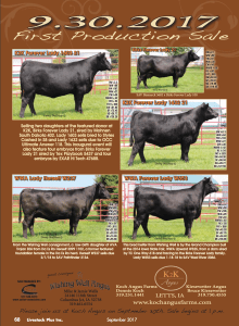 Wishing Well, Koch, & Kiesewetter Angus Production Sale