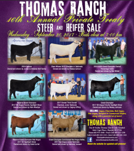 Thomas Ranch Private Treaty Sale @ Harrold | South Dakota | United States