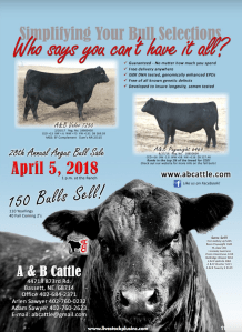 A & B 28th Annual Angus Bull Sale @ At the farm | Bassett | Nebraska | United States
