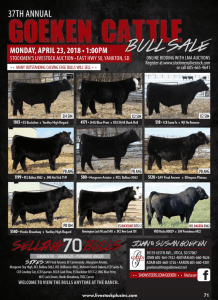 37th Annual Goeken Cattle Bull Sale @ Stockman's Livestock Auction | Yankton | South Dakota | United States