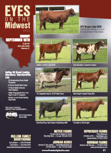 Eyes on the Midwest Sale @ Albin Sale Facility | Newman | Illinois | United States