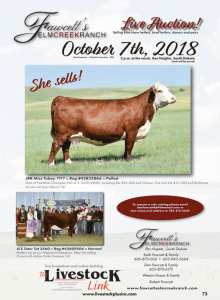 Fawcett's Elm Creek Ranch Live Auction @ Ree Heights | South Dakota | United States