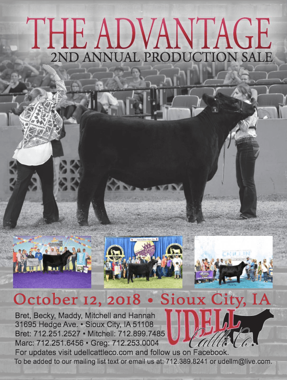 Udell Cattle Co. Production Sale on 10/12/18