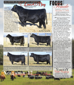 Yardley Cattle Co. Focus on the Female Sale @ Beaver | Utah | United States
