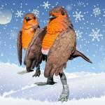 Tweeting Robins