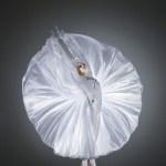 Winged Ballerinas