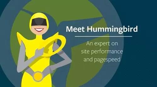 Download Hummingbird Pro v2.4.3 WordPress Performance Plugin