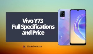 Vivo Y73 Full Specifications and Price