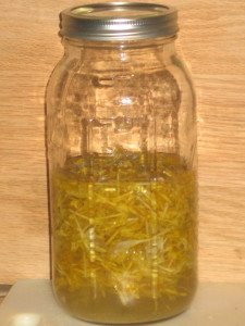 Honeysuckle Infusion