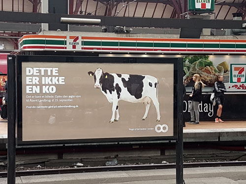 "Fotografi som visar en reklamskylt på en tågperrong. På reklambilden syns en söt ko mot en enfärgad, beige bakgrund. Bildens rubrik lyder ""Dette er ikke en ko""."