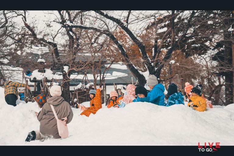 เทศกาลโยโคเตะ คามาคูระ