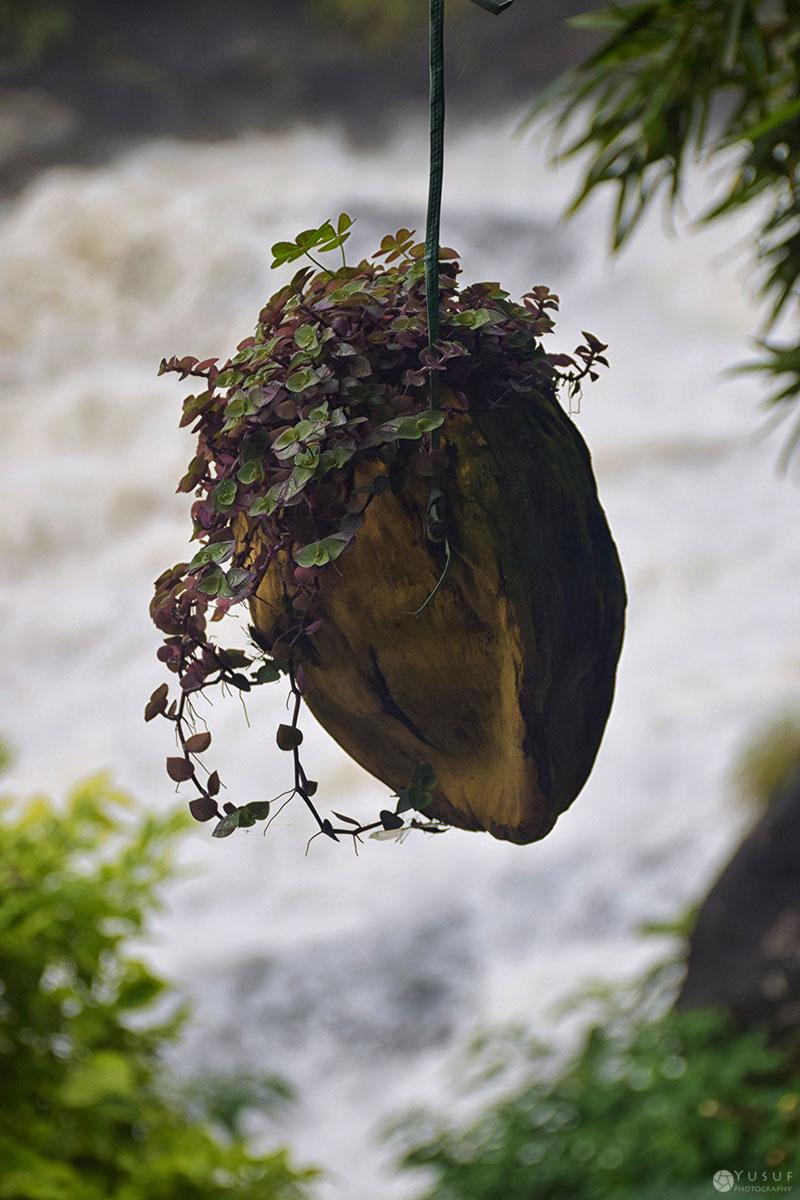 hanging-garden-1