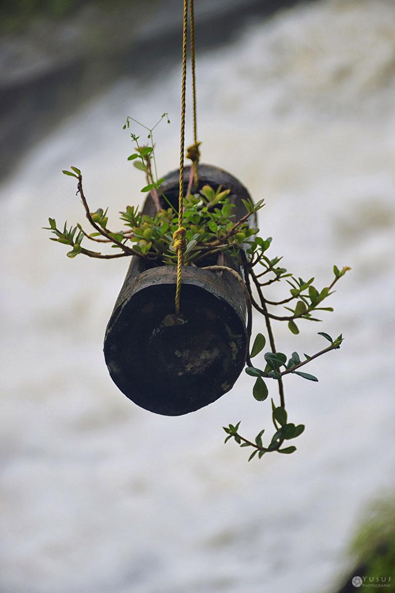 hanging-garden-2