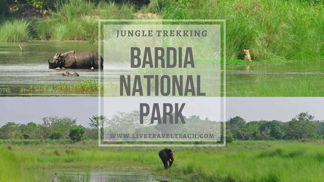 Bardia National Park - Jungle Walk